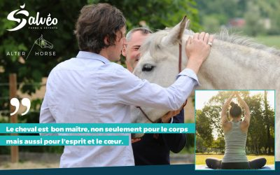 COACHING PAR LE CHEVAL ET YOGA